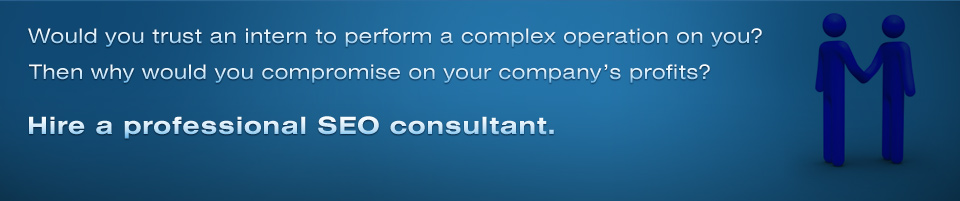 Professional SEO Consulting Services Experts